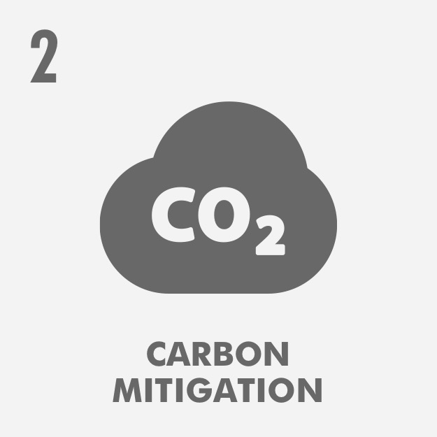 Carbon Mitigation